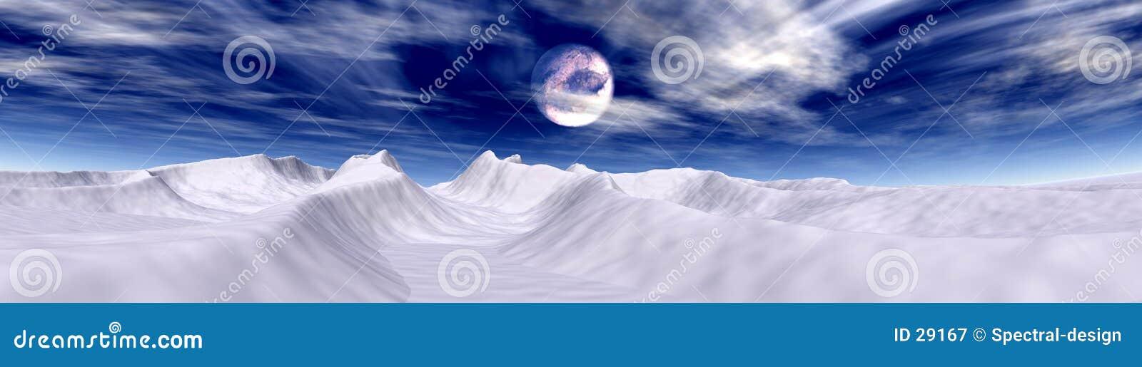 Arktyczna księżyca