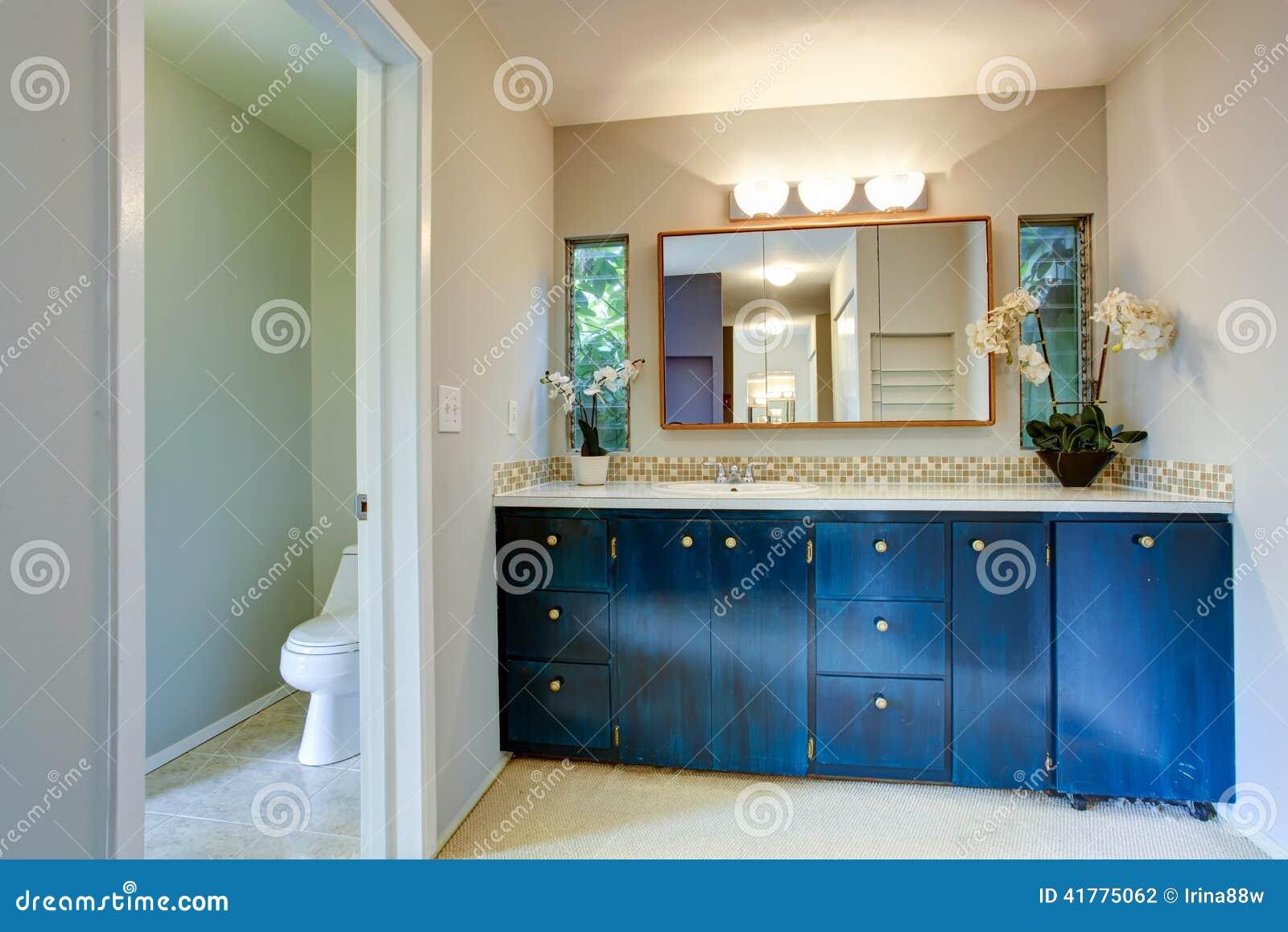 Armário Real Da Vaidade Do Banheiro Com Flores Foto de Stock Imagem  #164873 1300x957 Banheiro Com Luz Azul