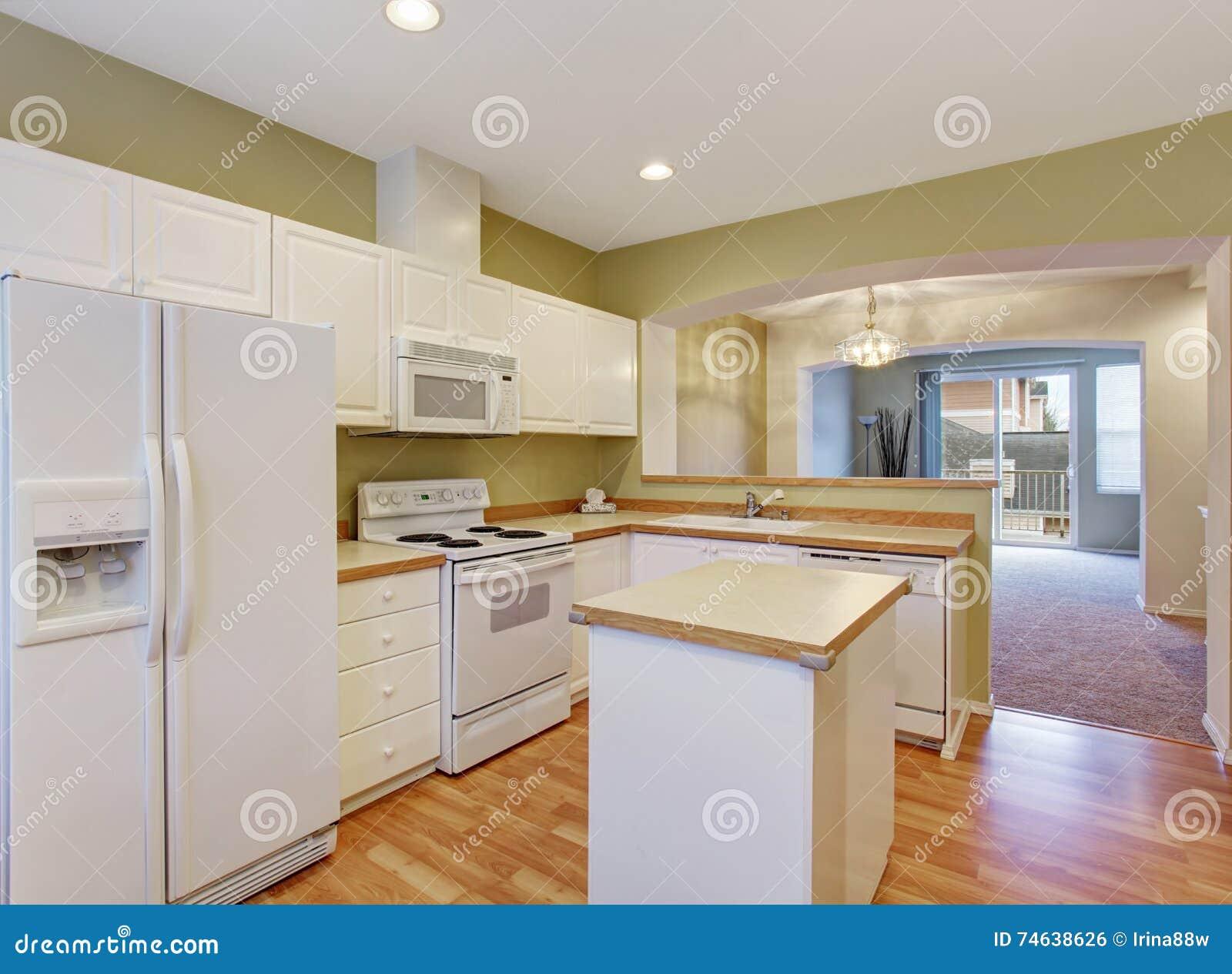Armarios de cocina blancos con los dispositivos y la isla for Armarios de cocina