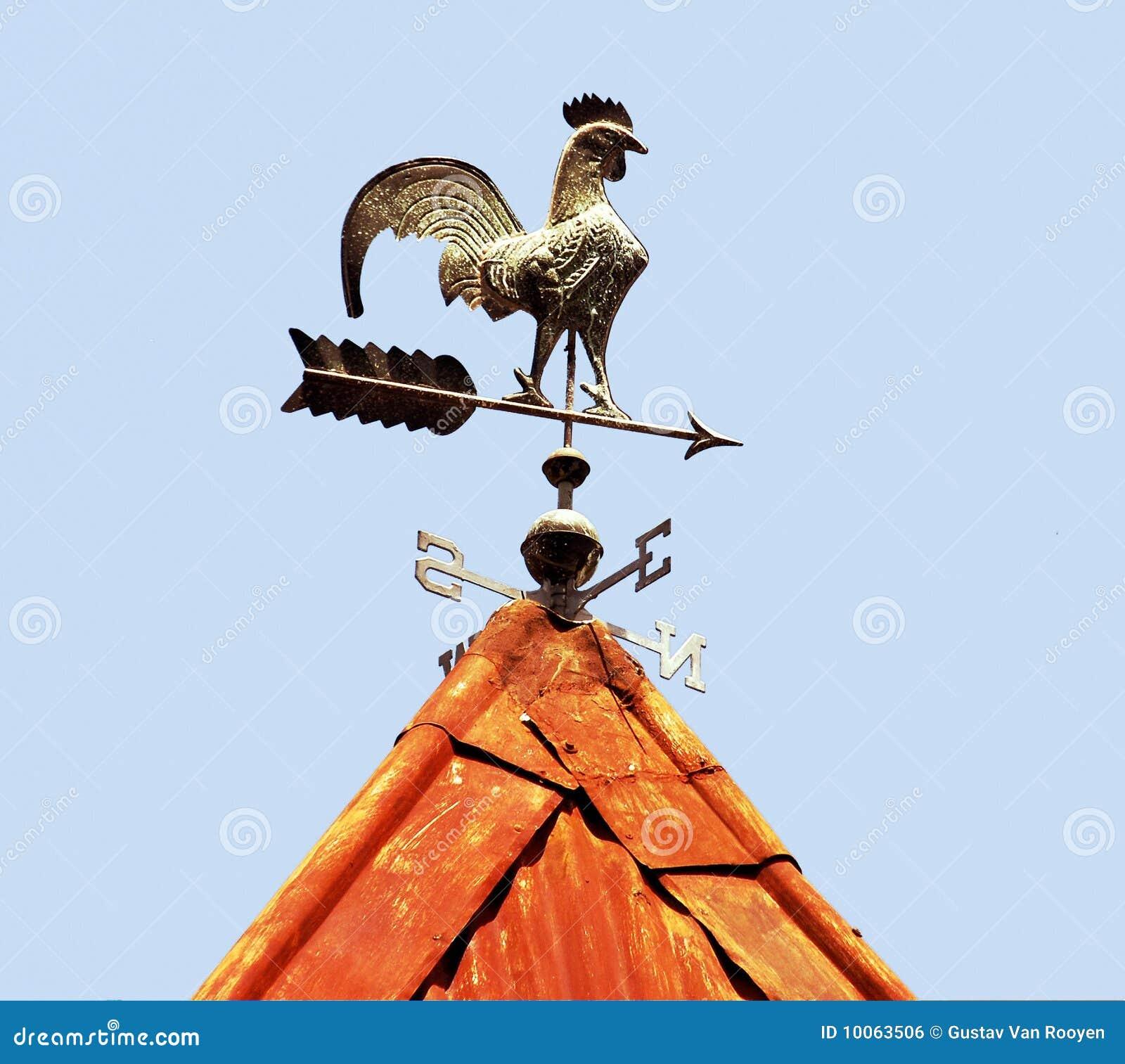 Arme no telhado