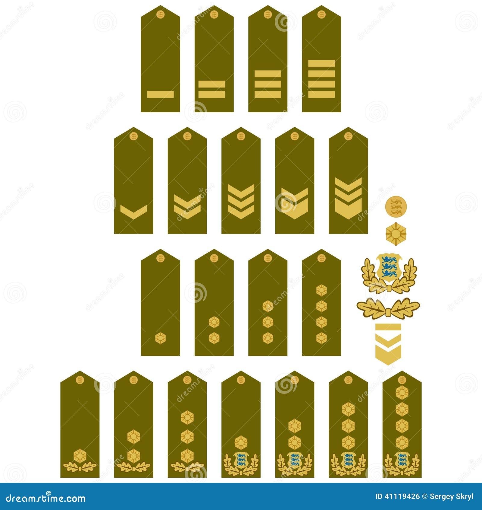 Armed Forces Insignia Estonia Stock Vector Image 41119426