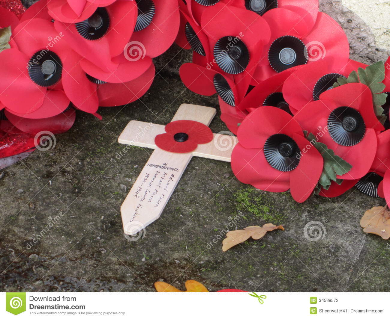 Armistice Day Poppies Editorial Photography Image 34538572