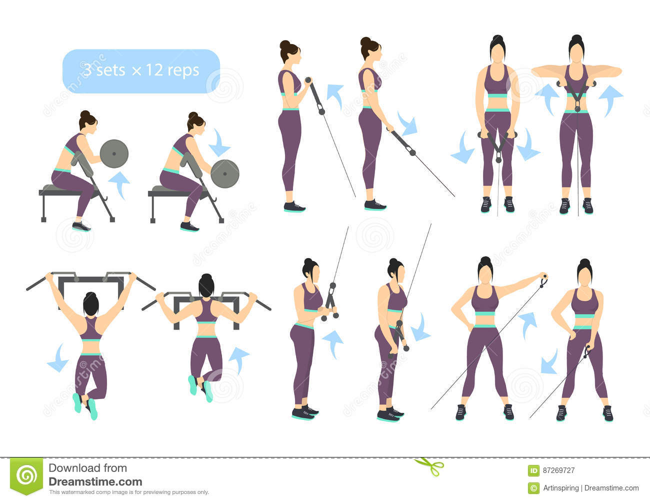 arms workout set stock vector illustration of curl