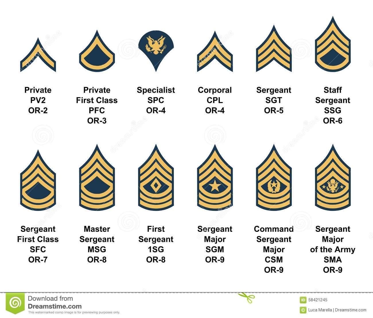 Army Enlisted Rank Insignia Stock Vector