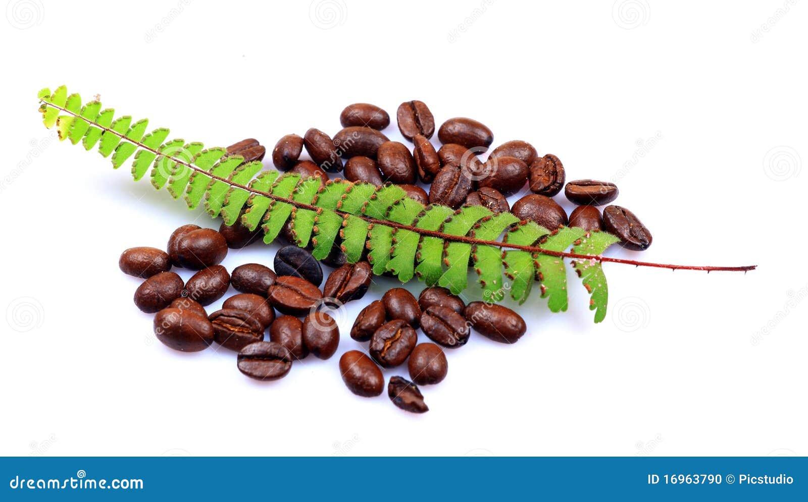 Aromated naturligt bönakaffe