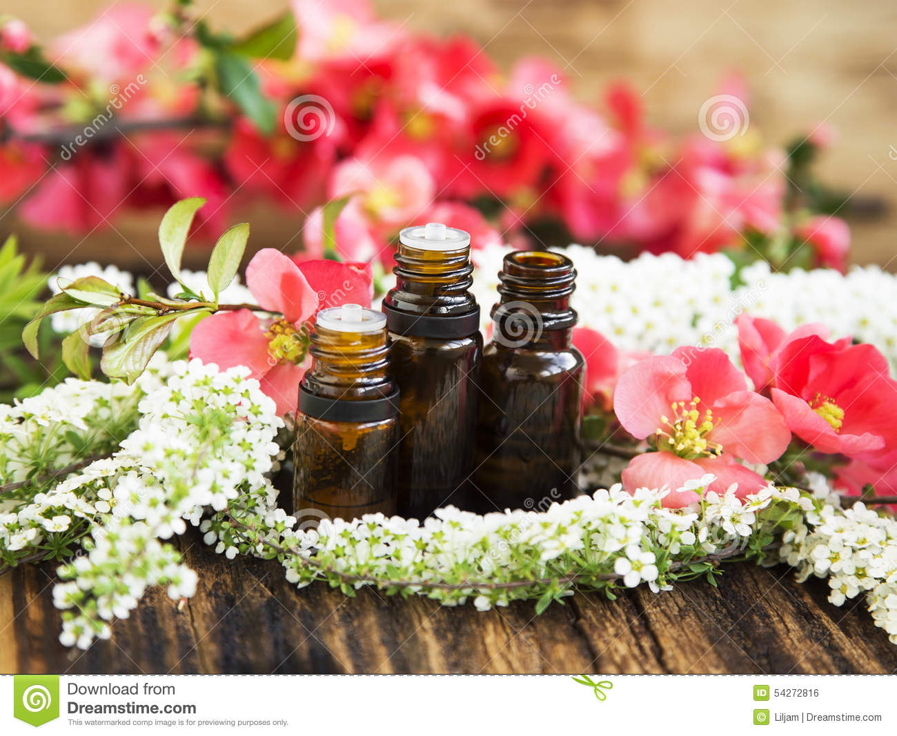 Aromatherapy Flower Essences In Bottles Stock Image