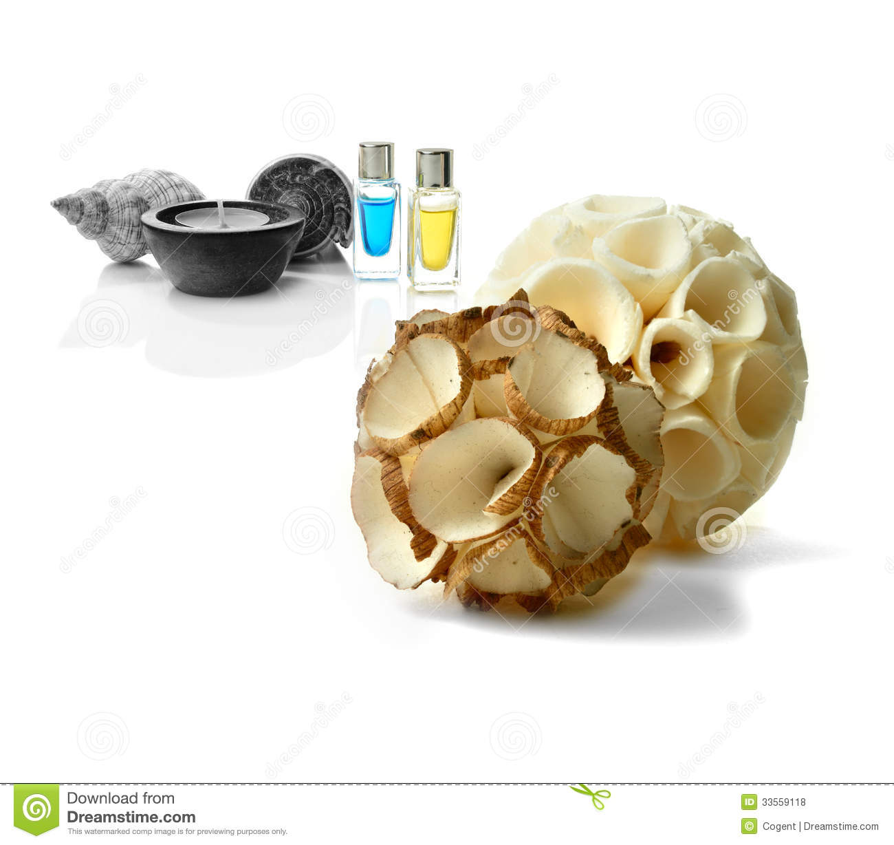 how to clean and whiten seashells