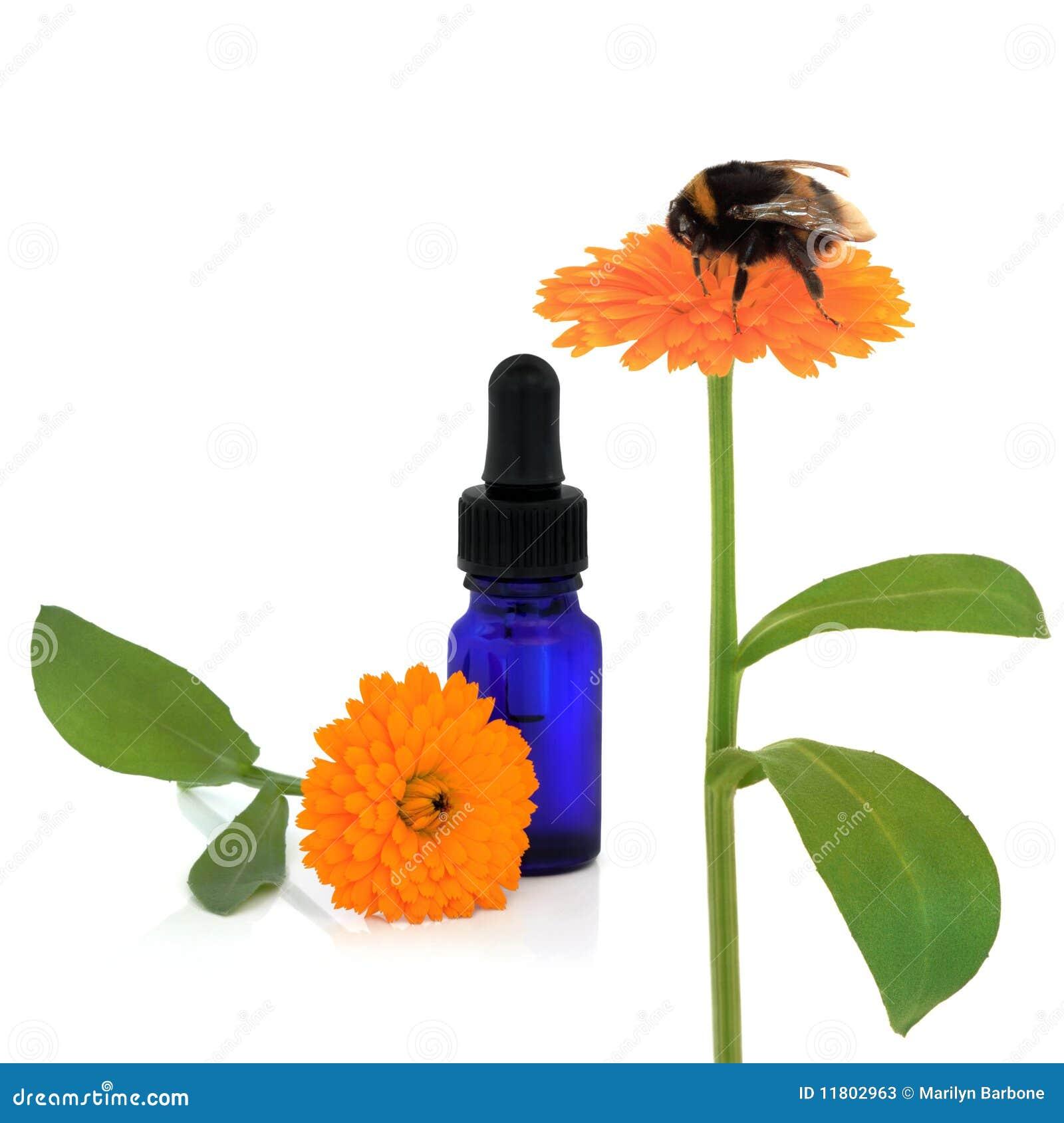 Aromatherapy ringblomma