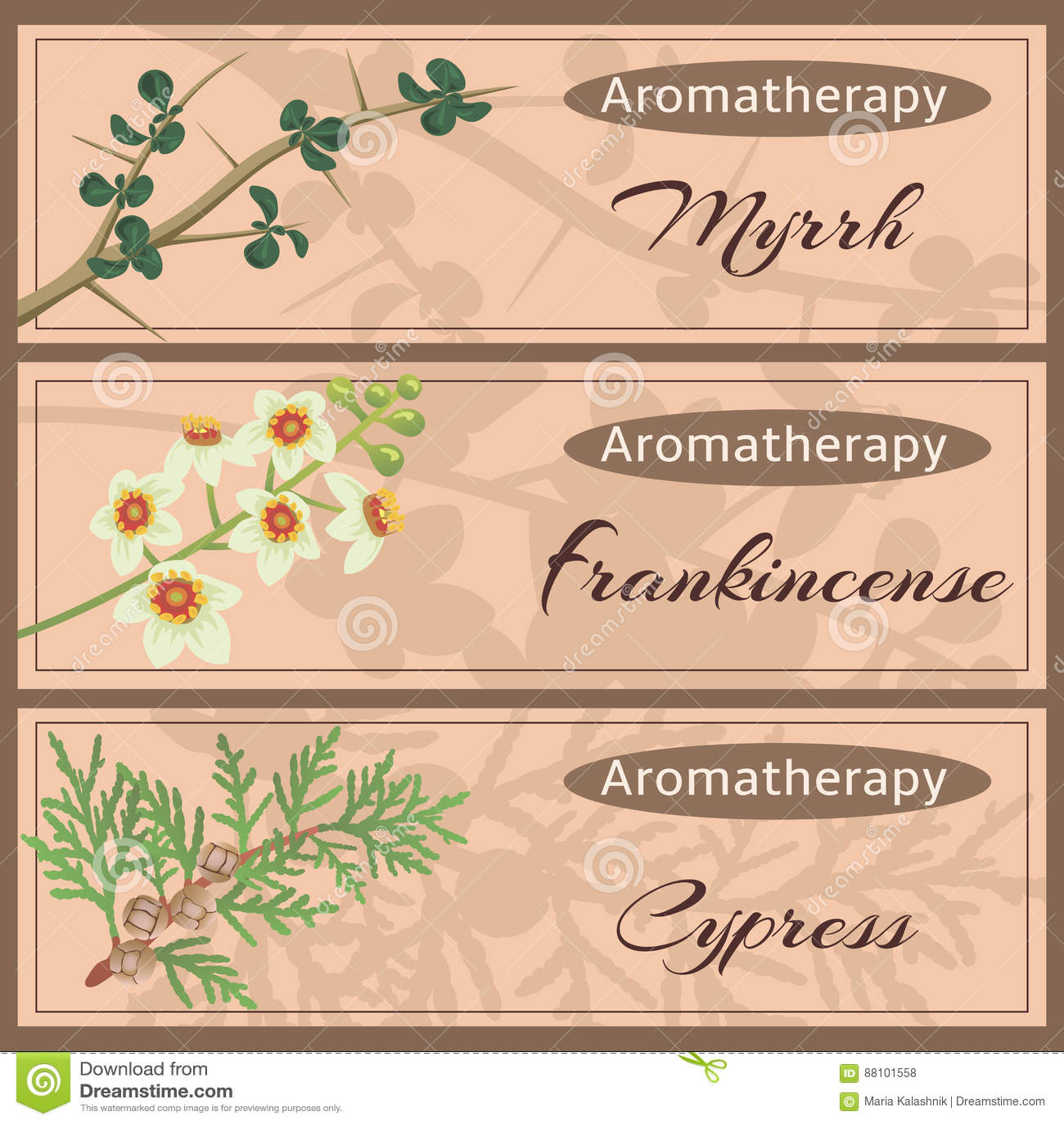 Aromatherapy vastgestelde inzameling