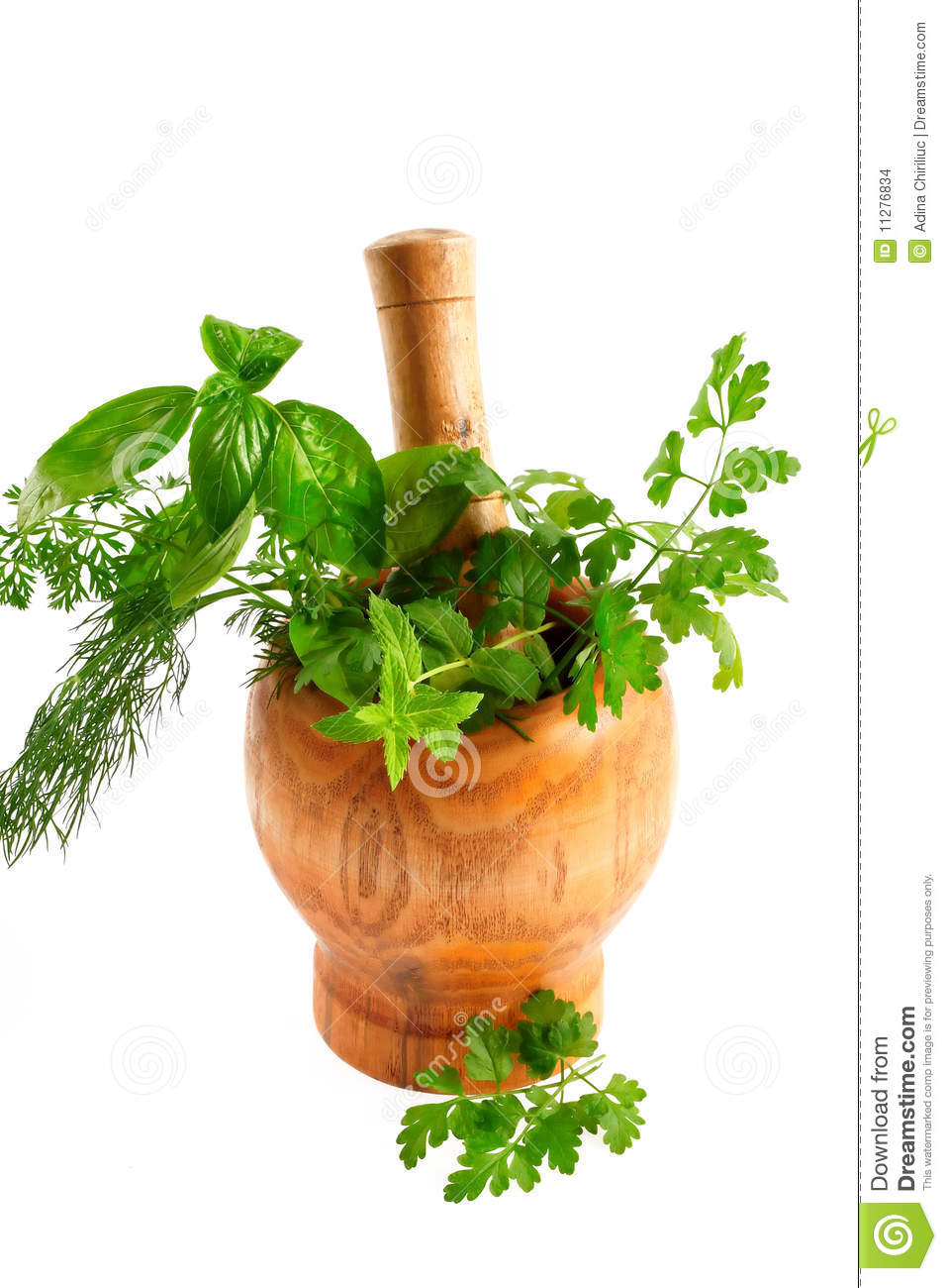 Aromatic Herbs And S