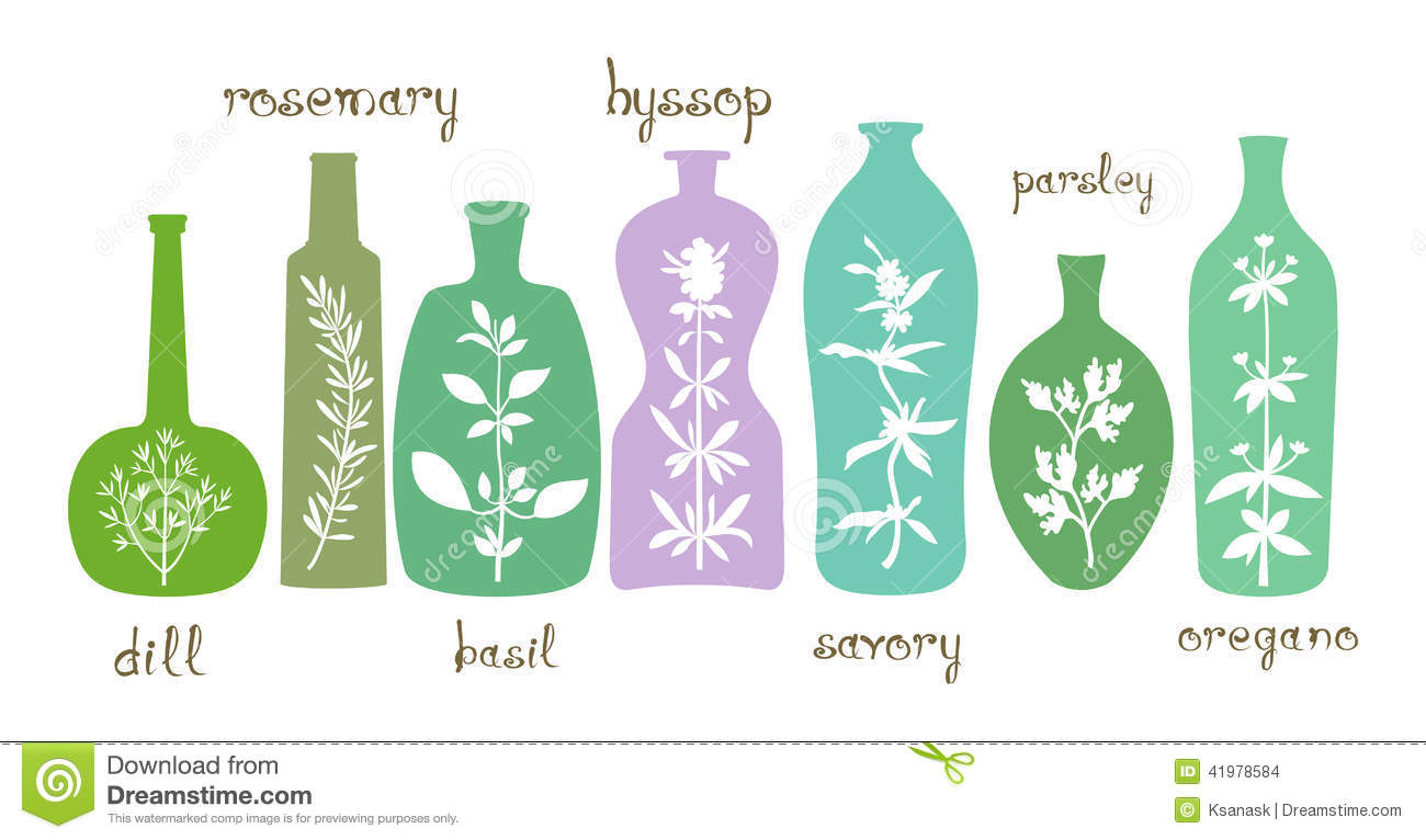 how to get essential oils from plants