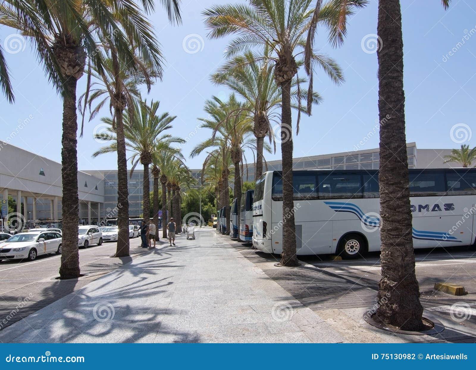 A roport de palma de mallorca en juillet photographie - En palma de mallorca ...