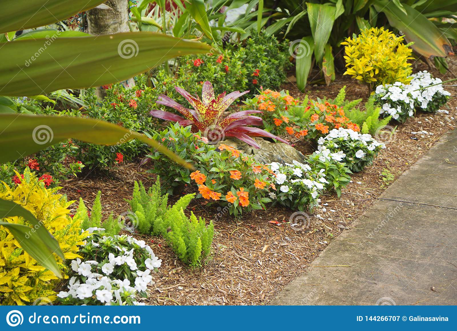 Coral Gables Florida Usa Landscaping Near Biltmore Hotel Stock