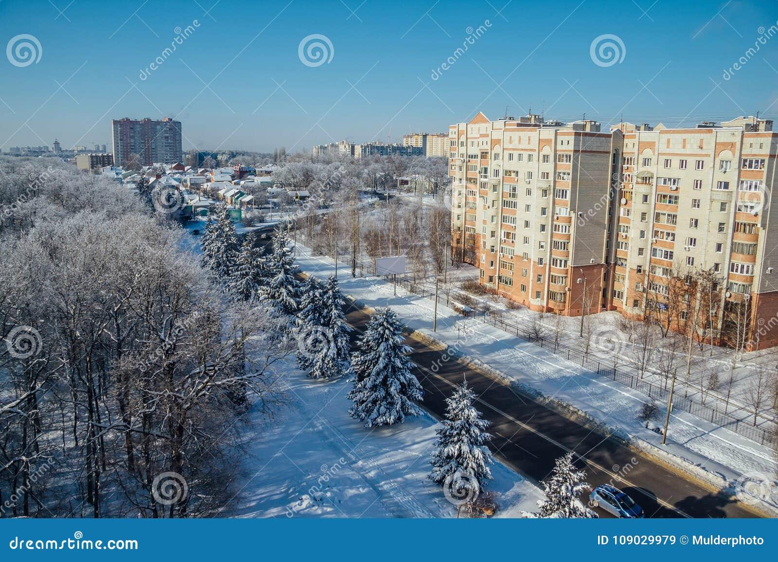 Arquitetura da cidade de Voronezh do inverno Árvores congeladas em uma floresta coberta pela neve e pela geada perto das casas mo