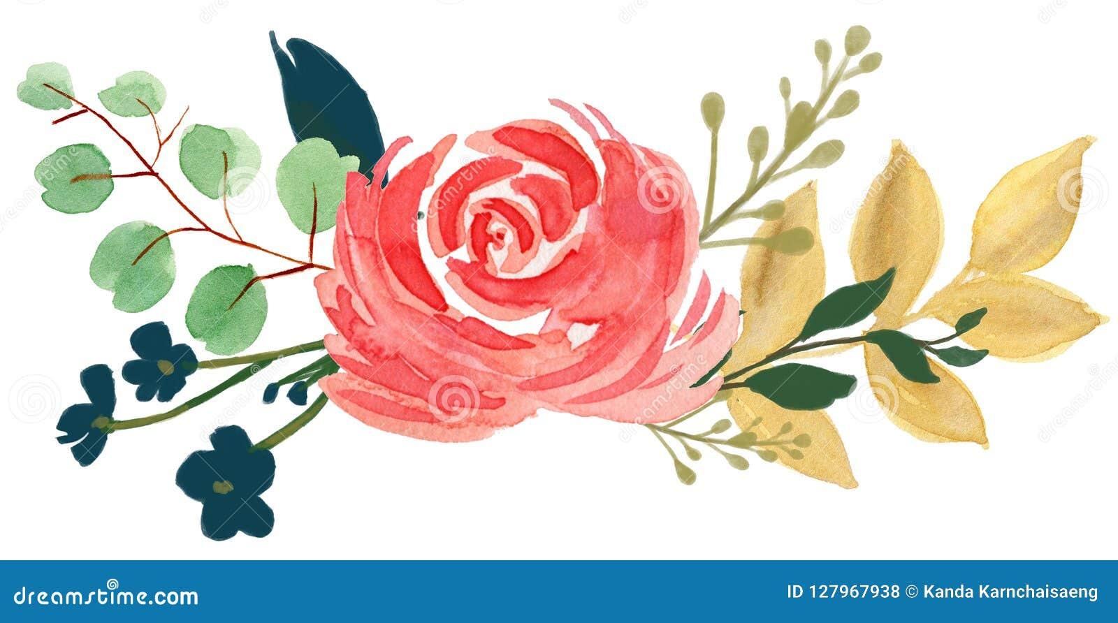 Arr rosa del fiore dell estratto della peonia dell annata della Boemia della flora dell acquerello