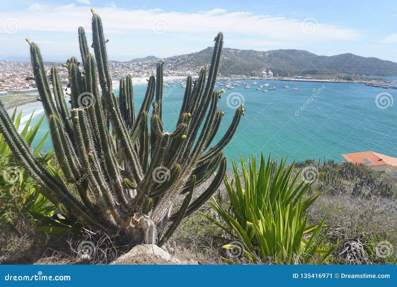 Arraial gör Cabo - Brasilien