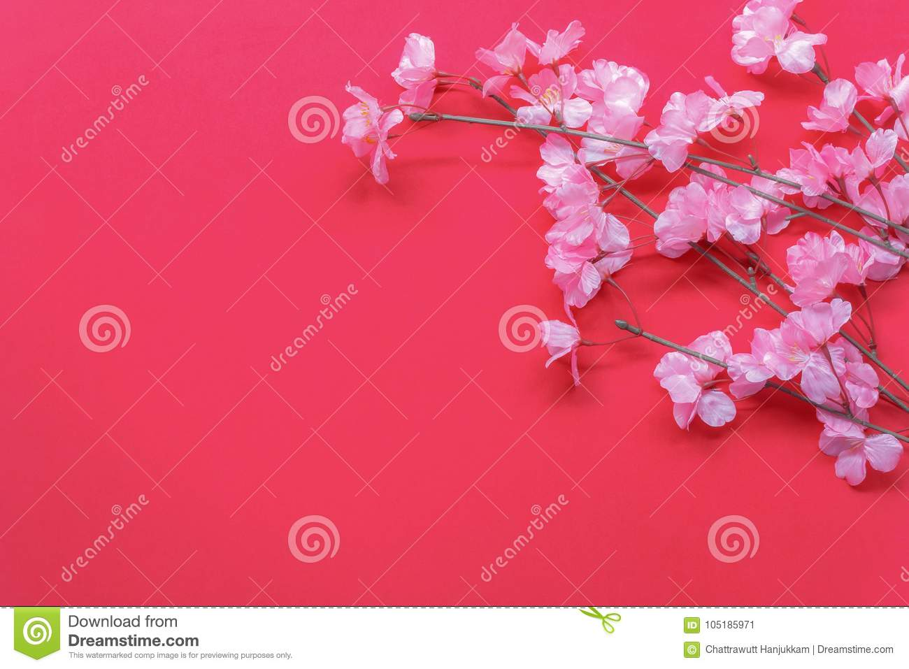 Download Arrangement Decoration Chinese New Year Lunar Festival Concept Background Stock Image