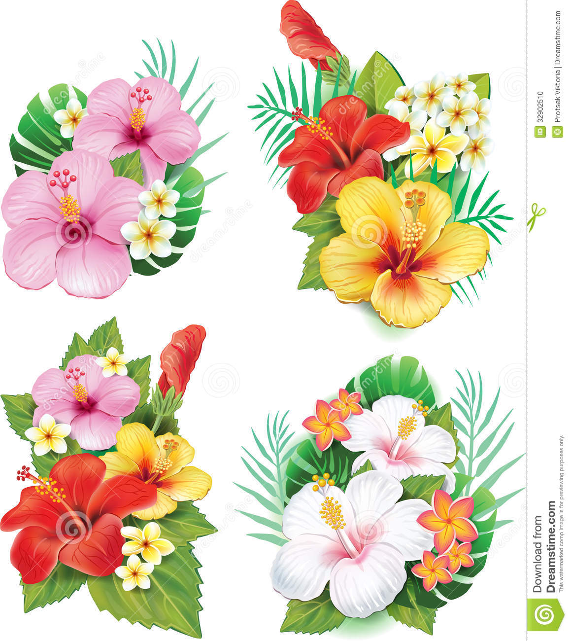 arrangement from hibiscus flowers stock photo  image, Beautiful flower