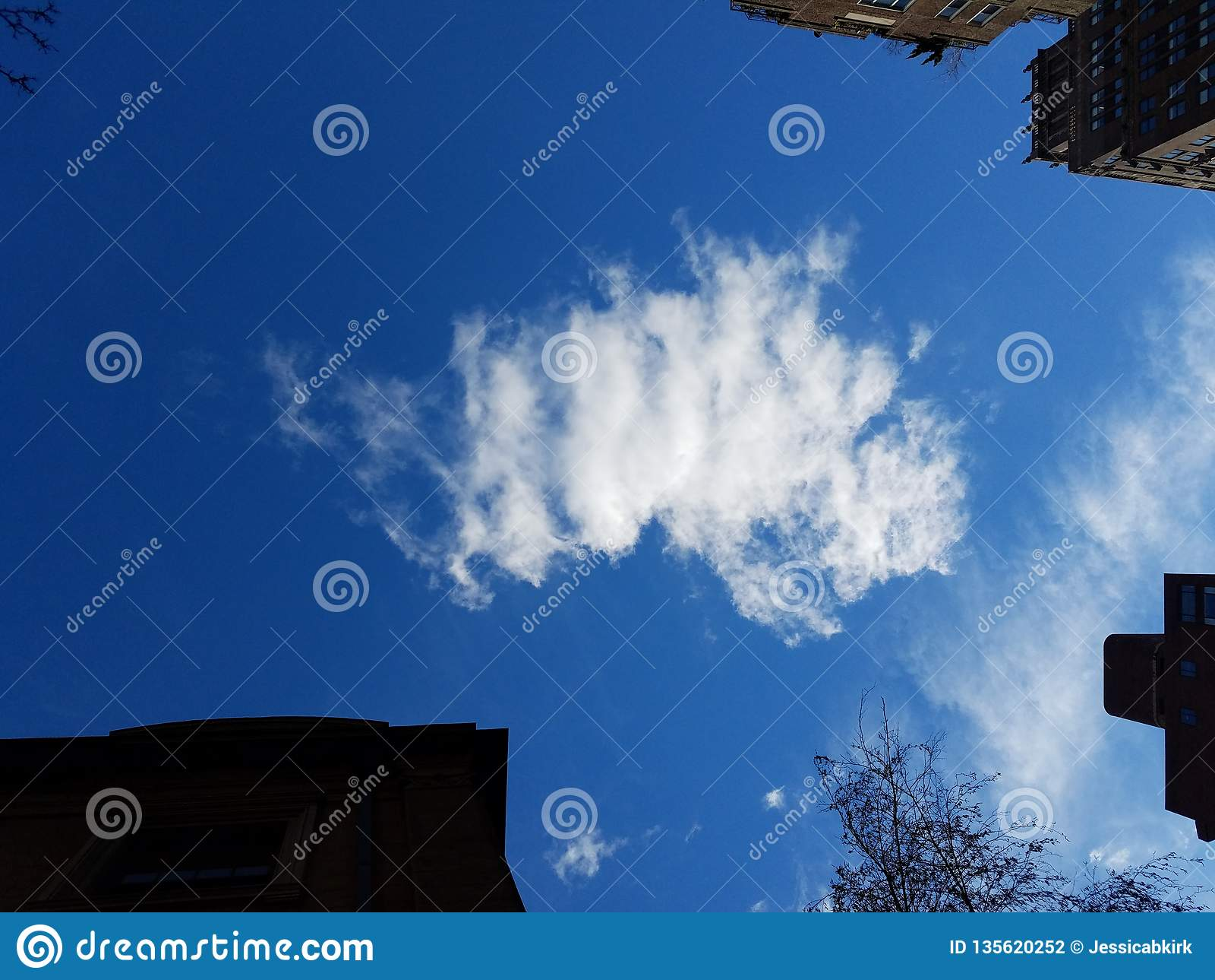 Arranha-céus e céu de baixo de