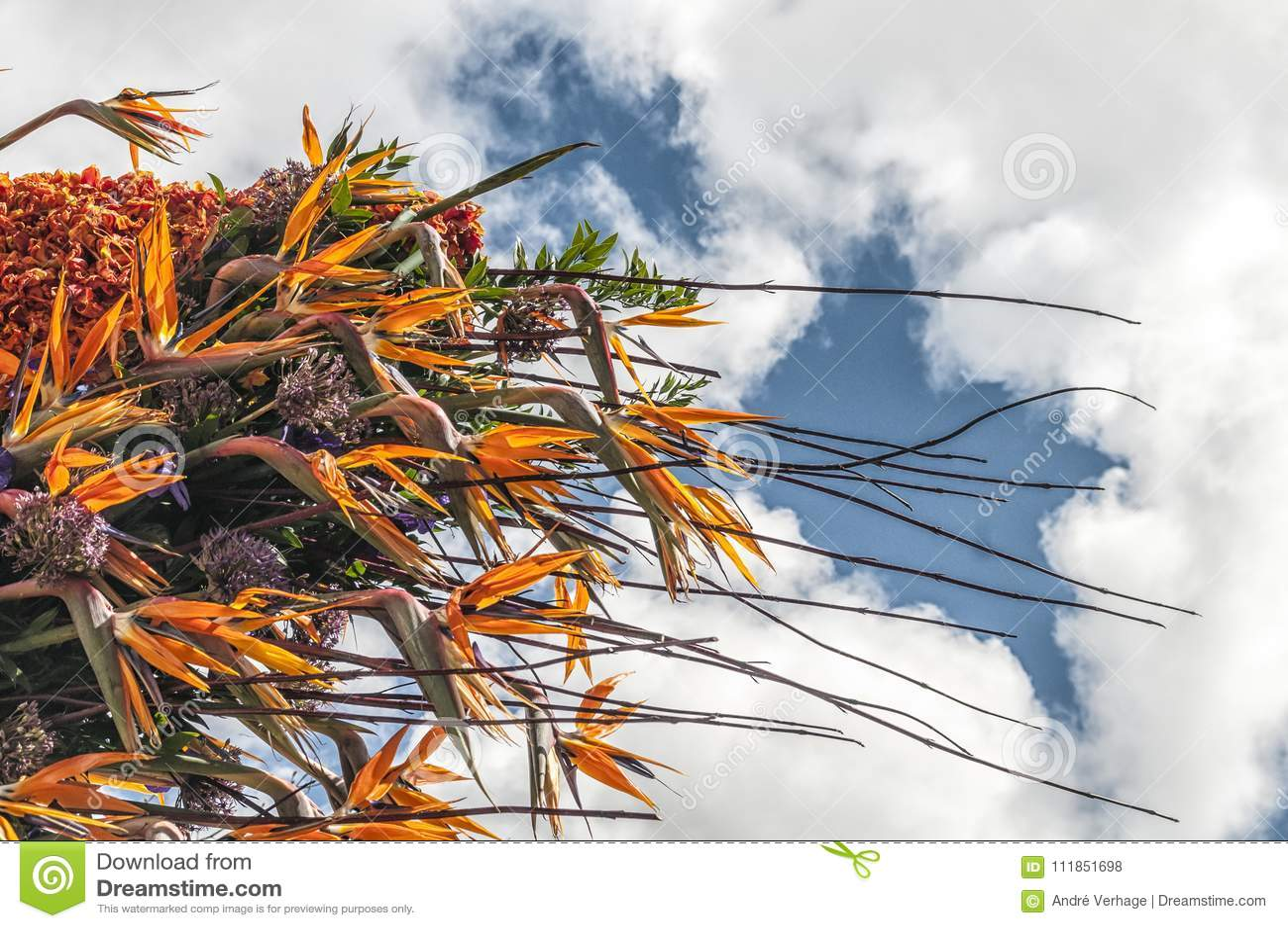 Arranjo de flor bonito com lotes das cores