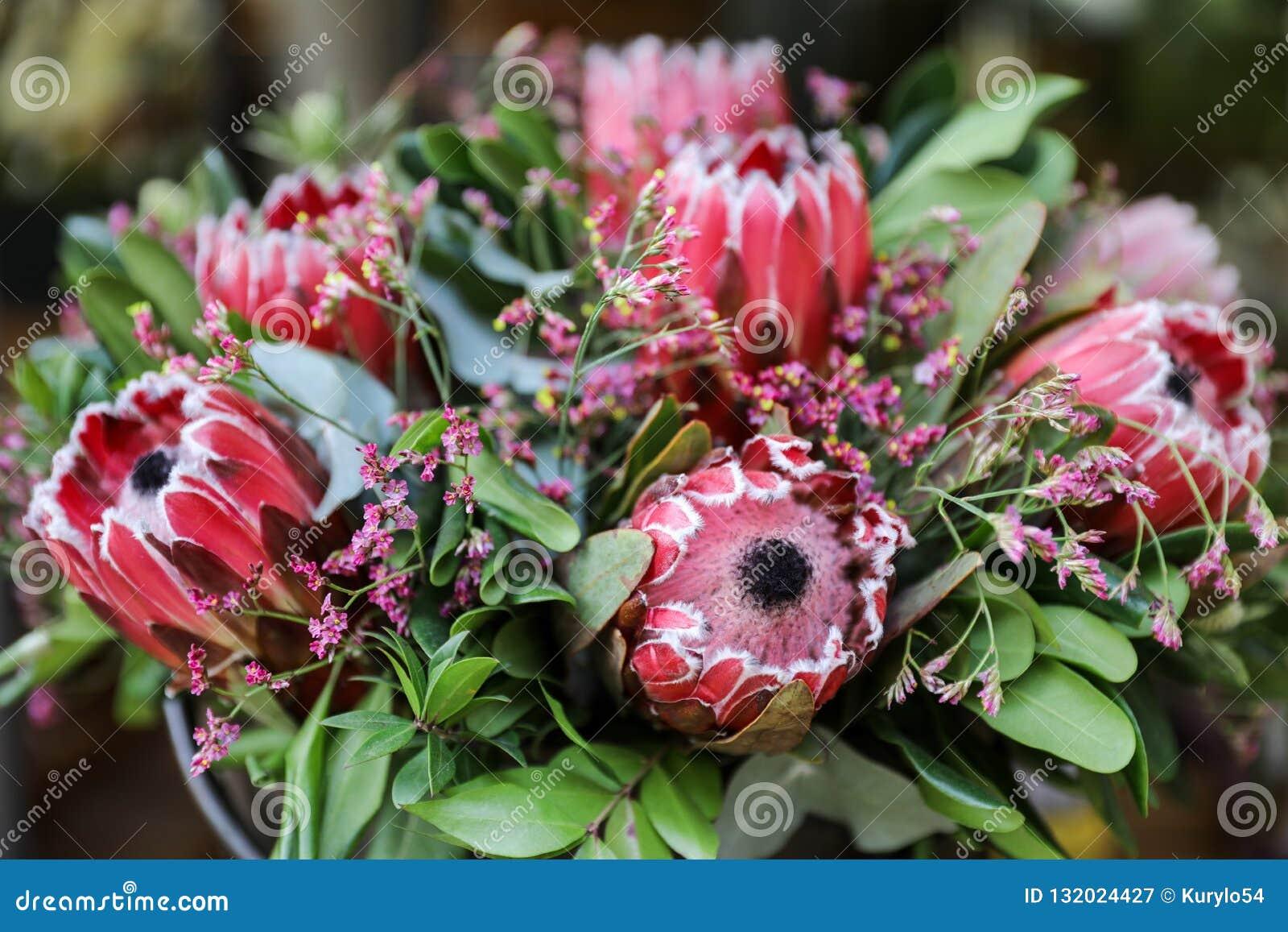 Arranjo de flor fresca bonito de flores do macrocephala do Protea