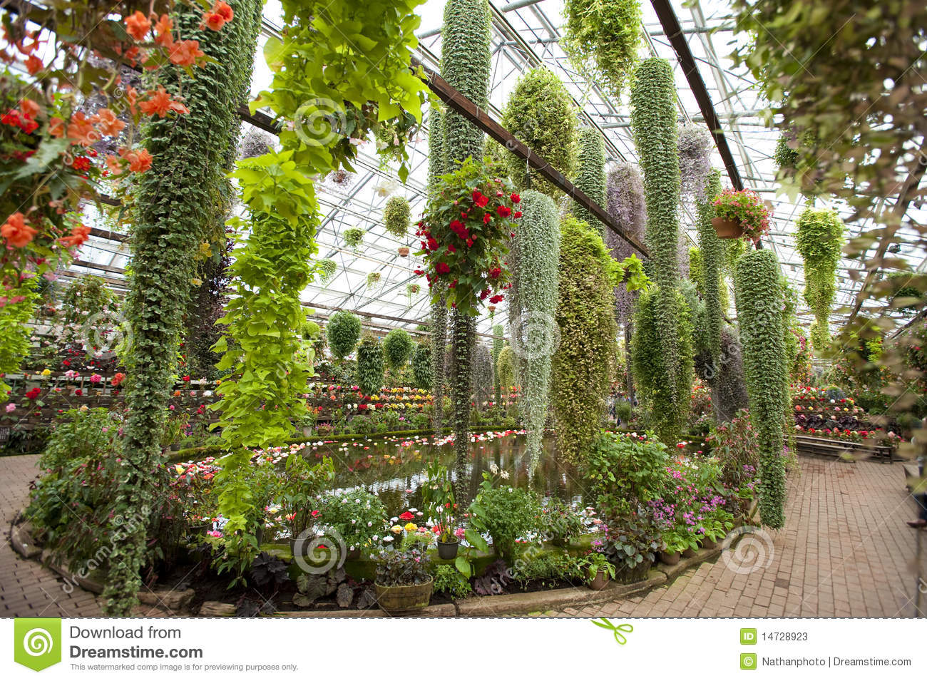 An Array Of Hanging Potted Flowering Plants Stock Photos