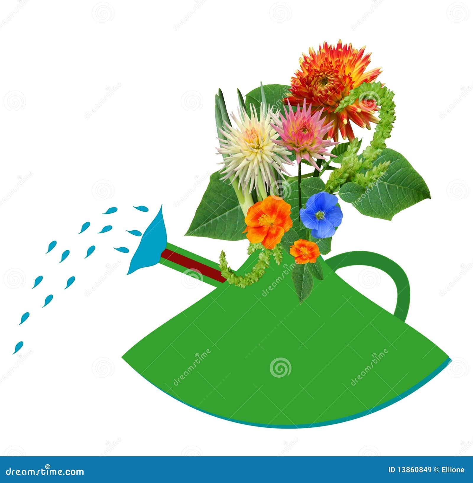 arrosage de jardin et fleurs sous tension images libres de droits image 13860849. Black Bedroom Furniture Sets. Home Design Ideas