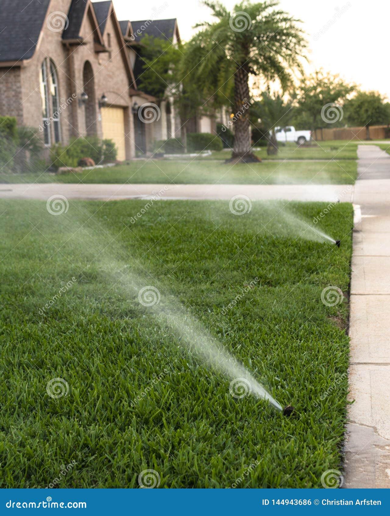 Arrosage de la pelouse