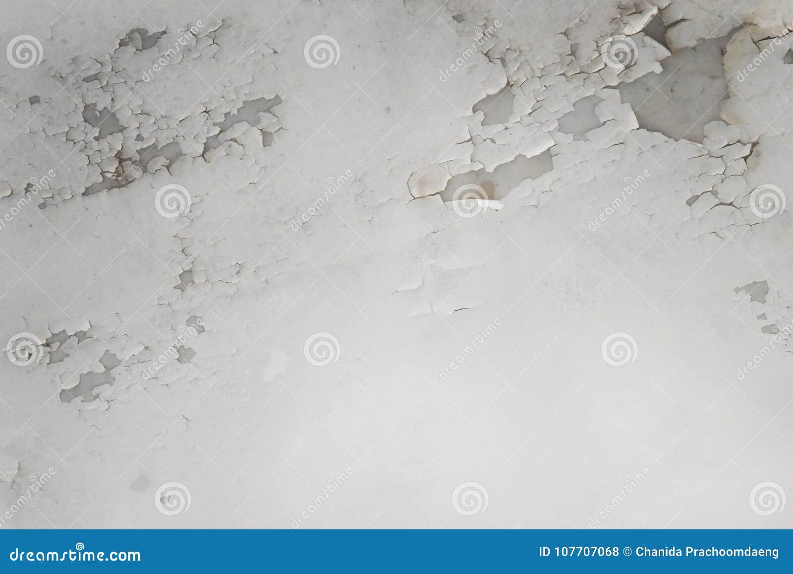 Arrosez les fuites sur le plafond causant des dommages, des tuiles et le ciment