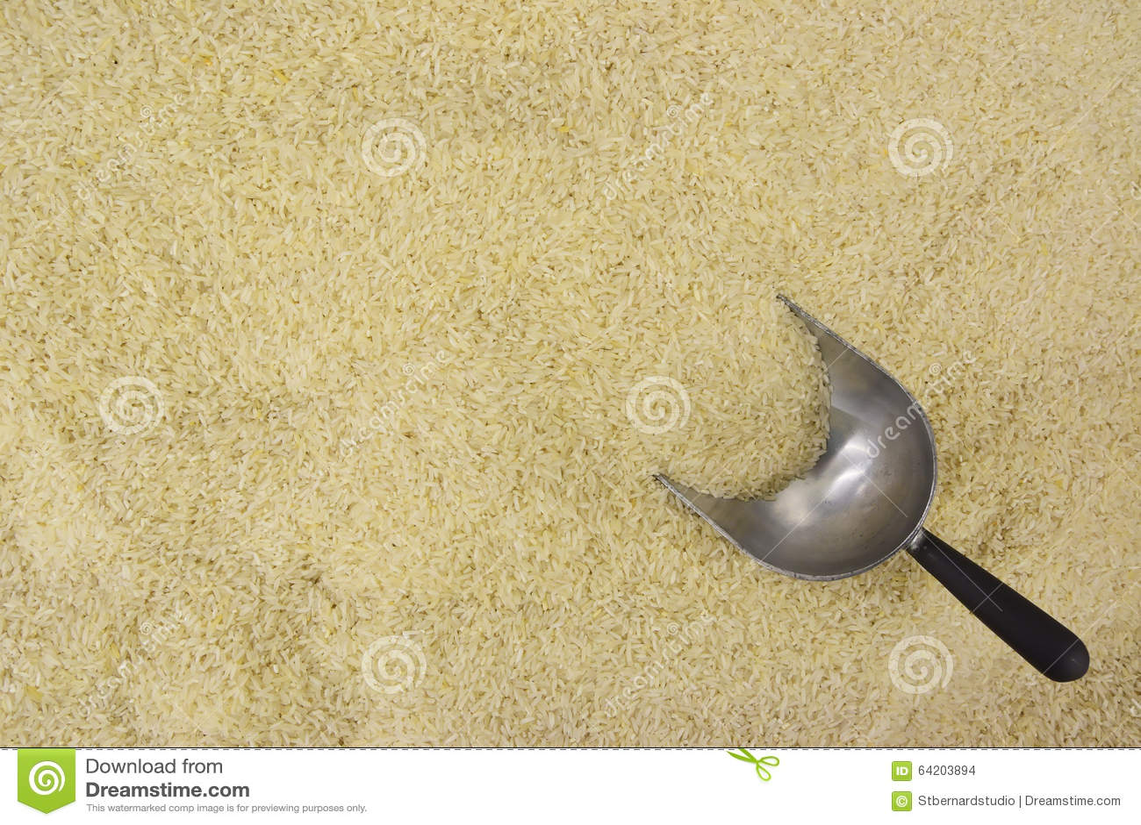 Arroz blanco con la mitad de la cucharada del acero inoxidable enterrada