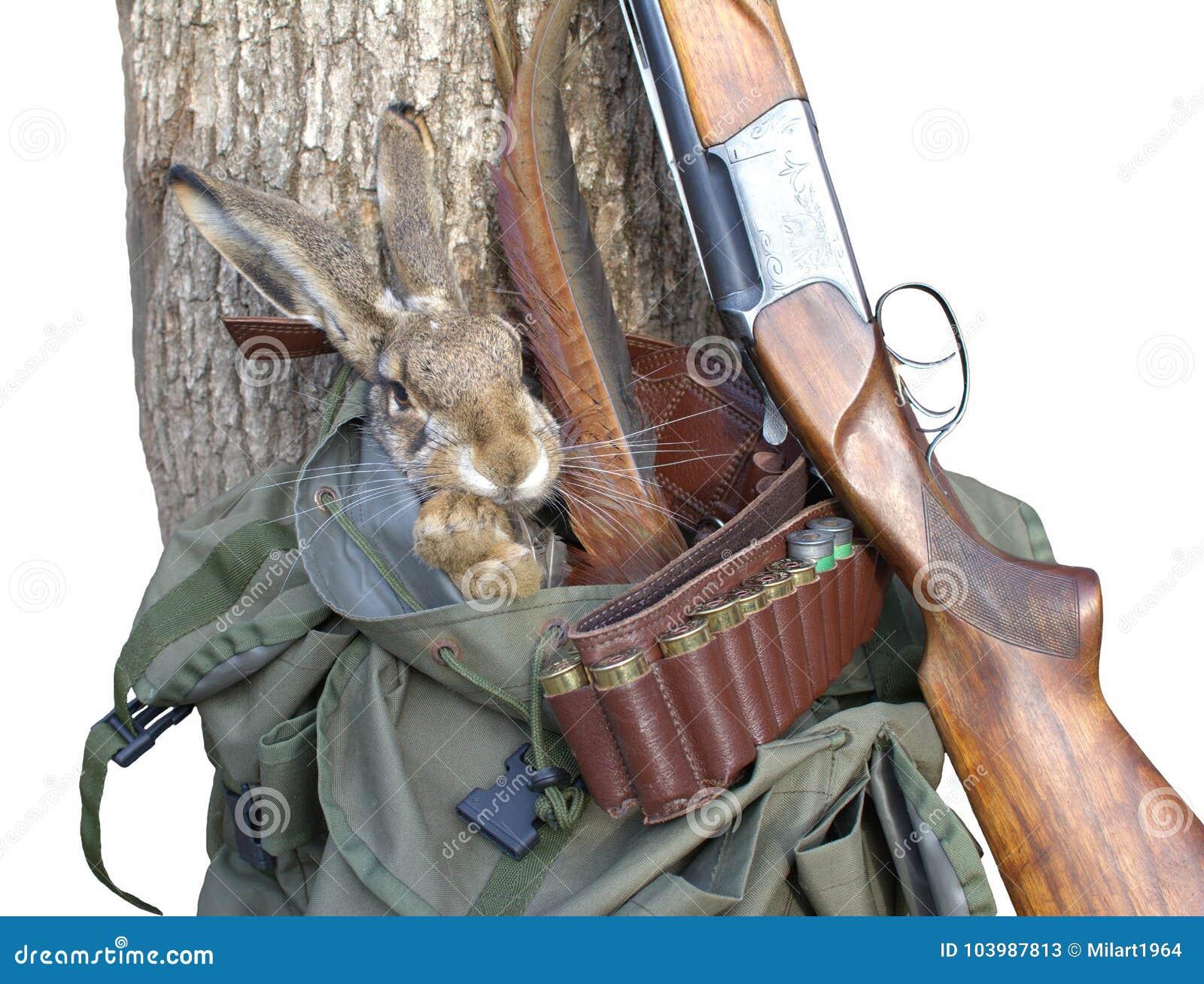 Aisl Shooting artículos de la caza concepto de la caza fondo de la caza