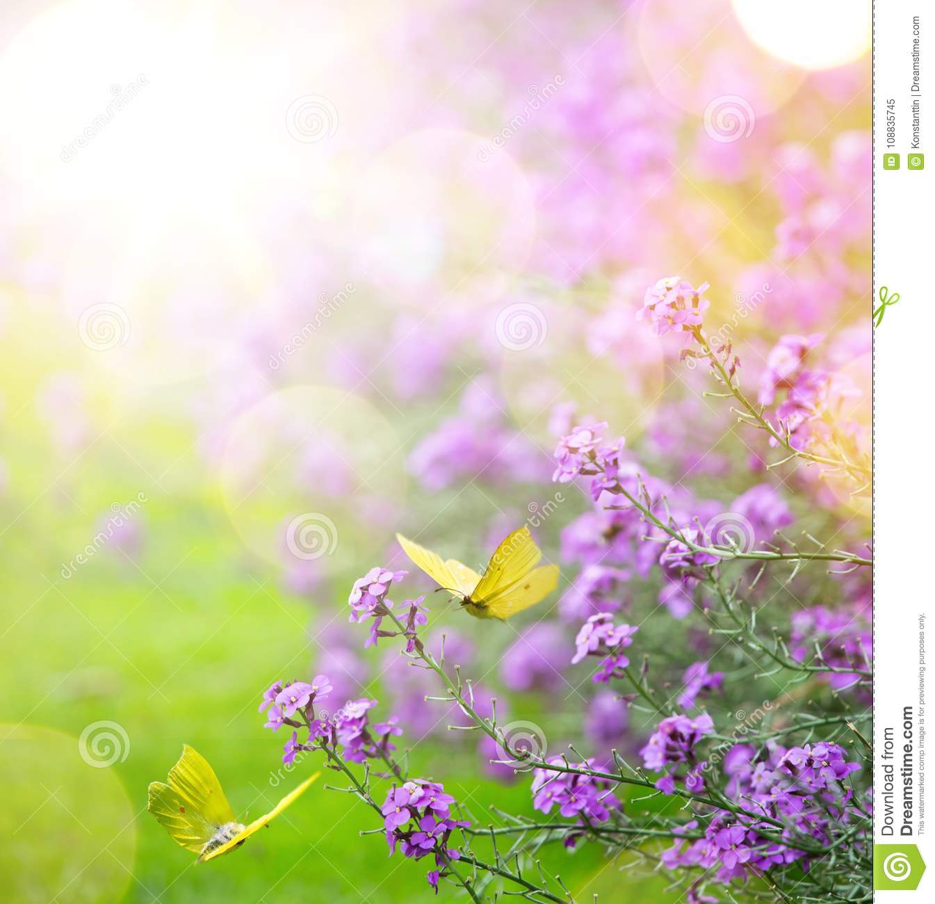 Art abstract spring background spring flower and butterfly stock download art abstract spring background spring flower and butterfly stock image image of spring mightylinksfo