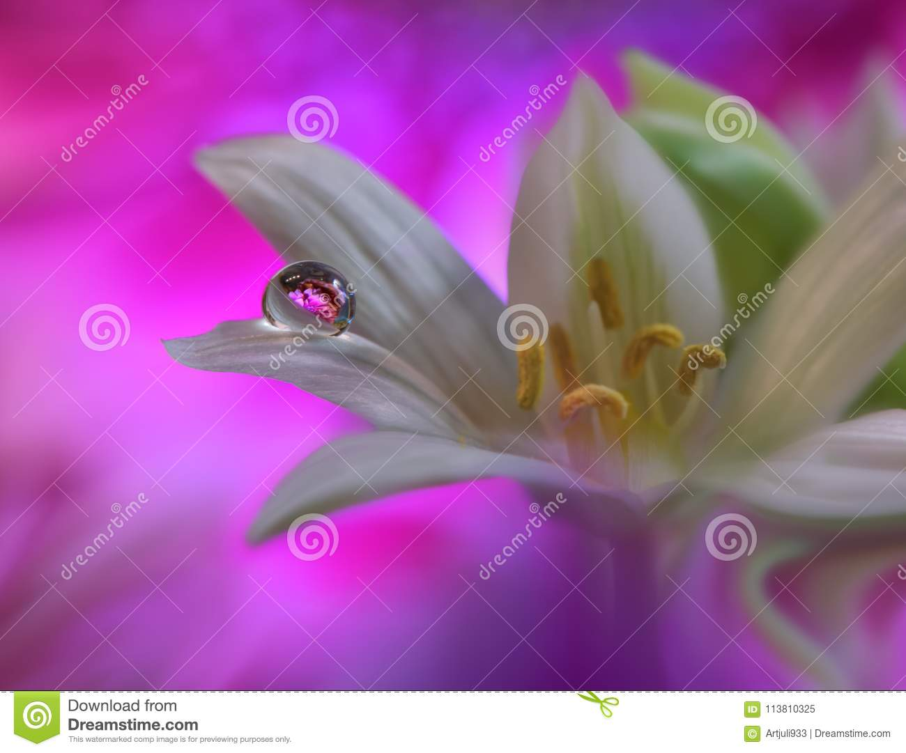 Art Abstract spring floral background for design.Droplet, drop.Purple,flower.Web banner.Border background.Beautiful Nature.
