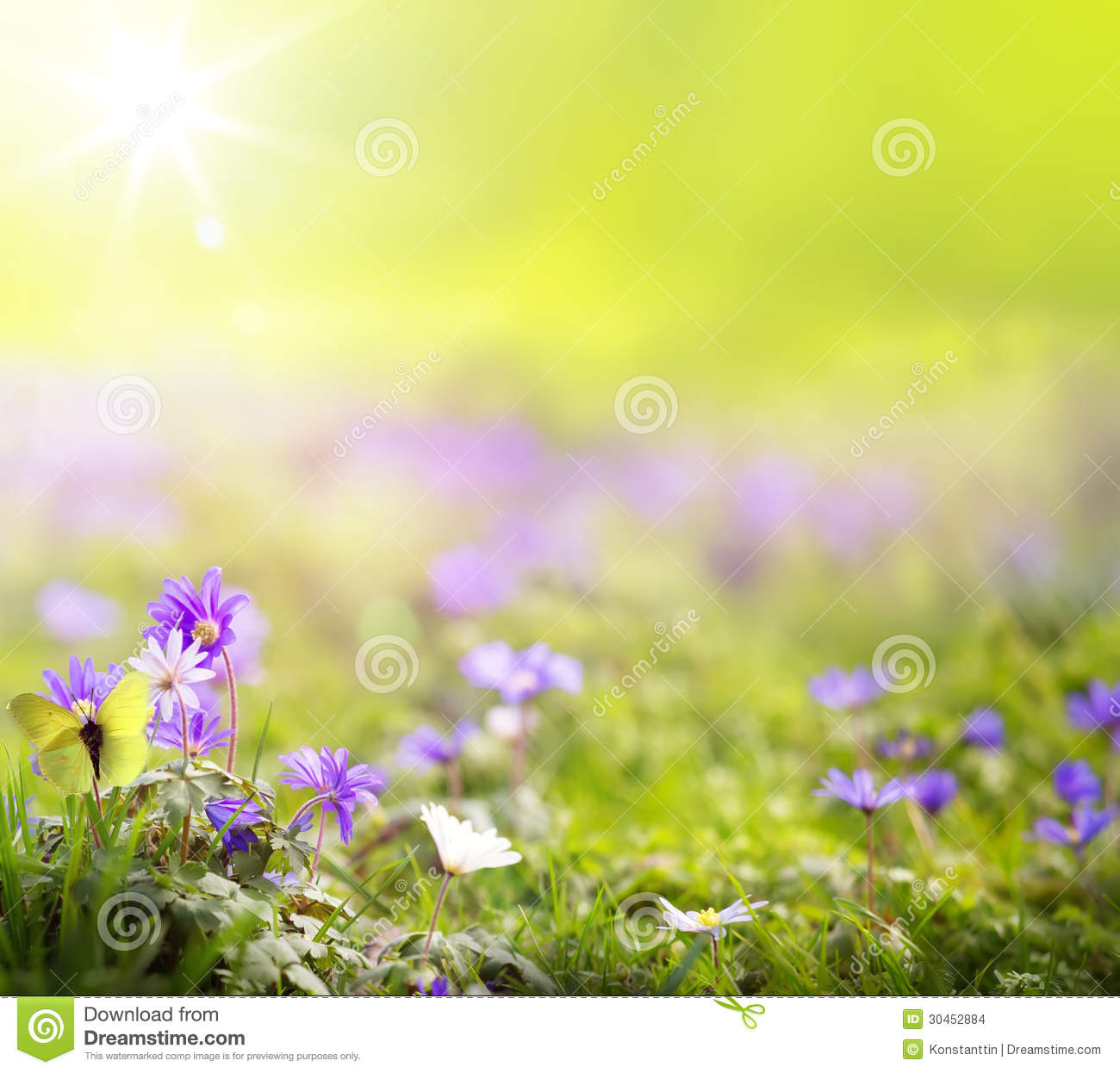art abstract spring green background stock photo image