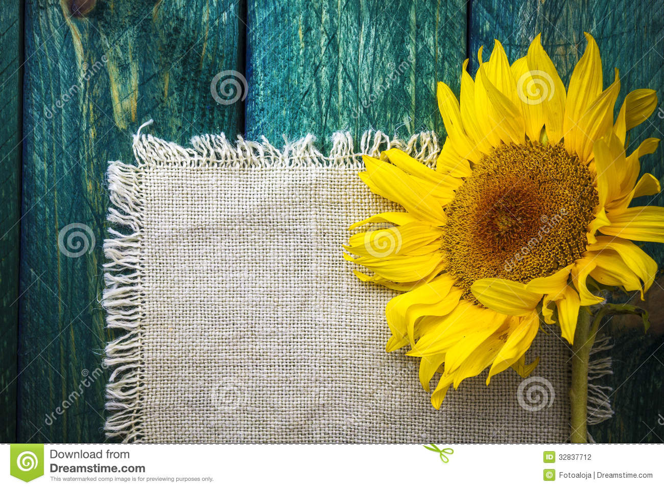 Download Art Background Summer Floral Flower Vintage Sunflower Stock Photo