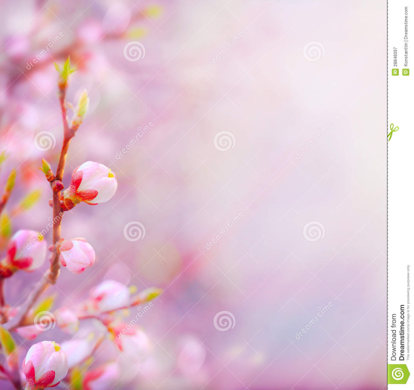 Art beautiful spring blossoming tree on sky background stock image art beautiful spring blossoming tree on sky background voltagebd Image collections
