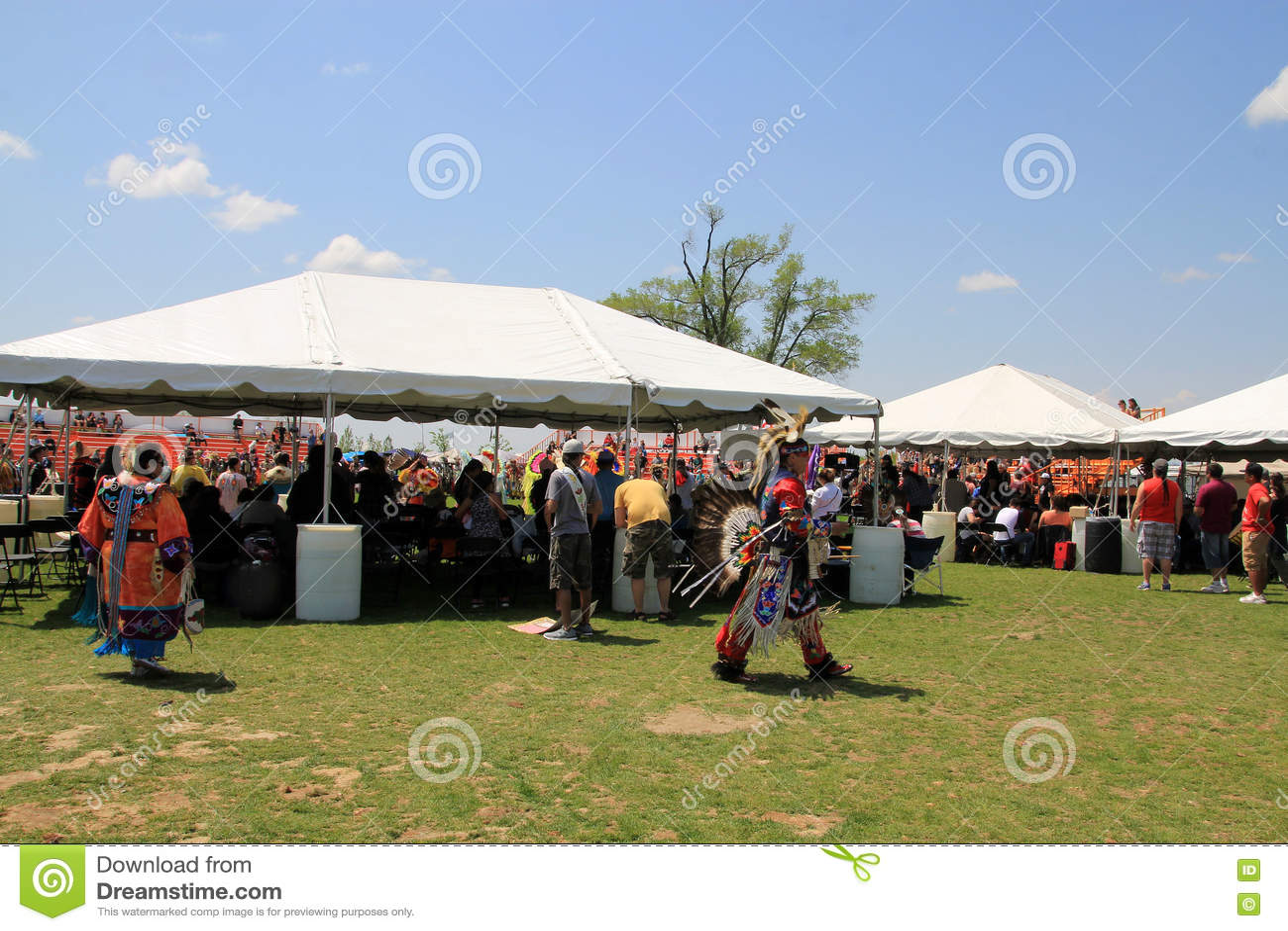 Aboriginal Dancer At Indigenous Cultural Festival