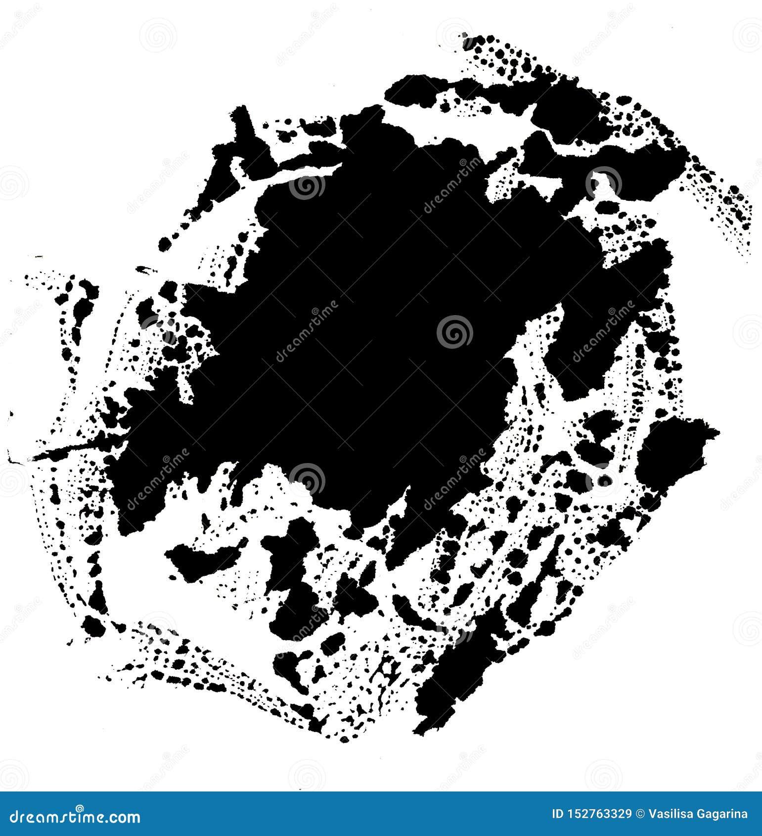 Art d aquarelle Tache noire abstraite sur le fond blanc dans le style d encre baisse d encre Couleur grise abr?gez le fond