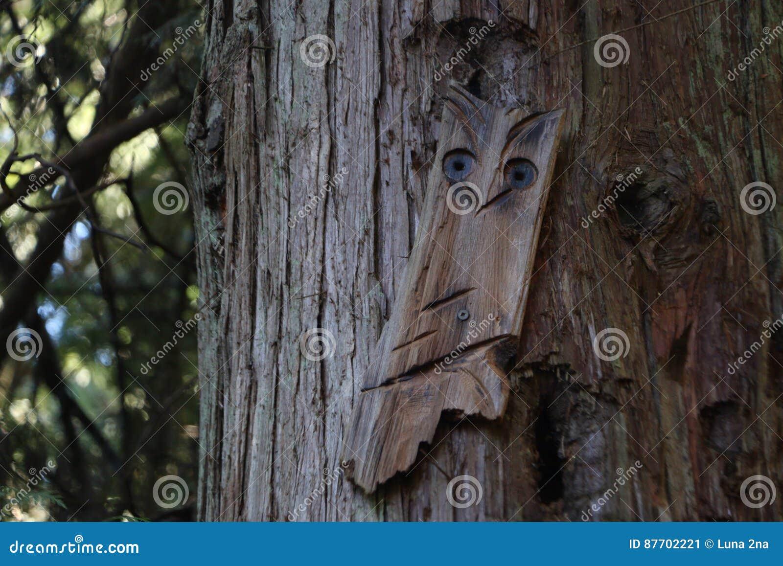 Art d arbre