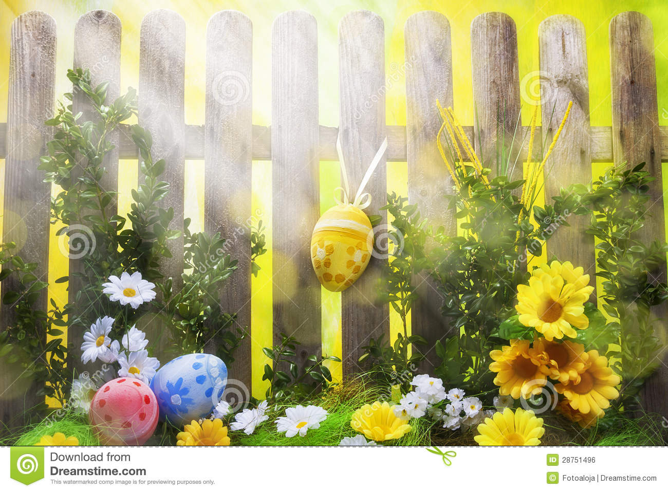 art easter background with fence eggs spring flowers royalty