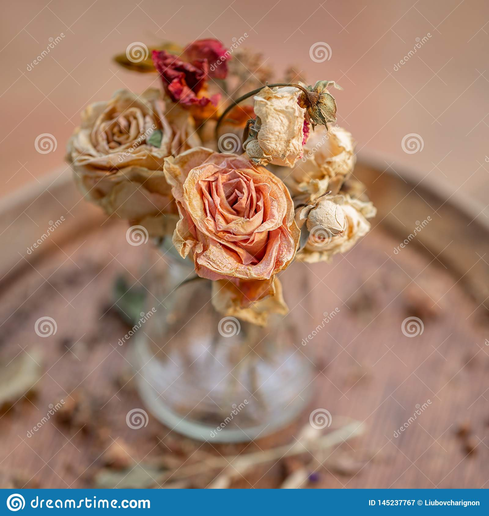 Art photography. Roses withered in a glass vase.