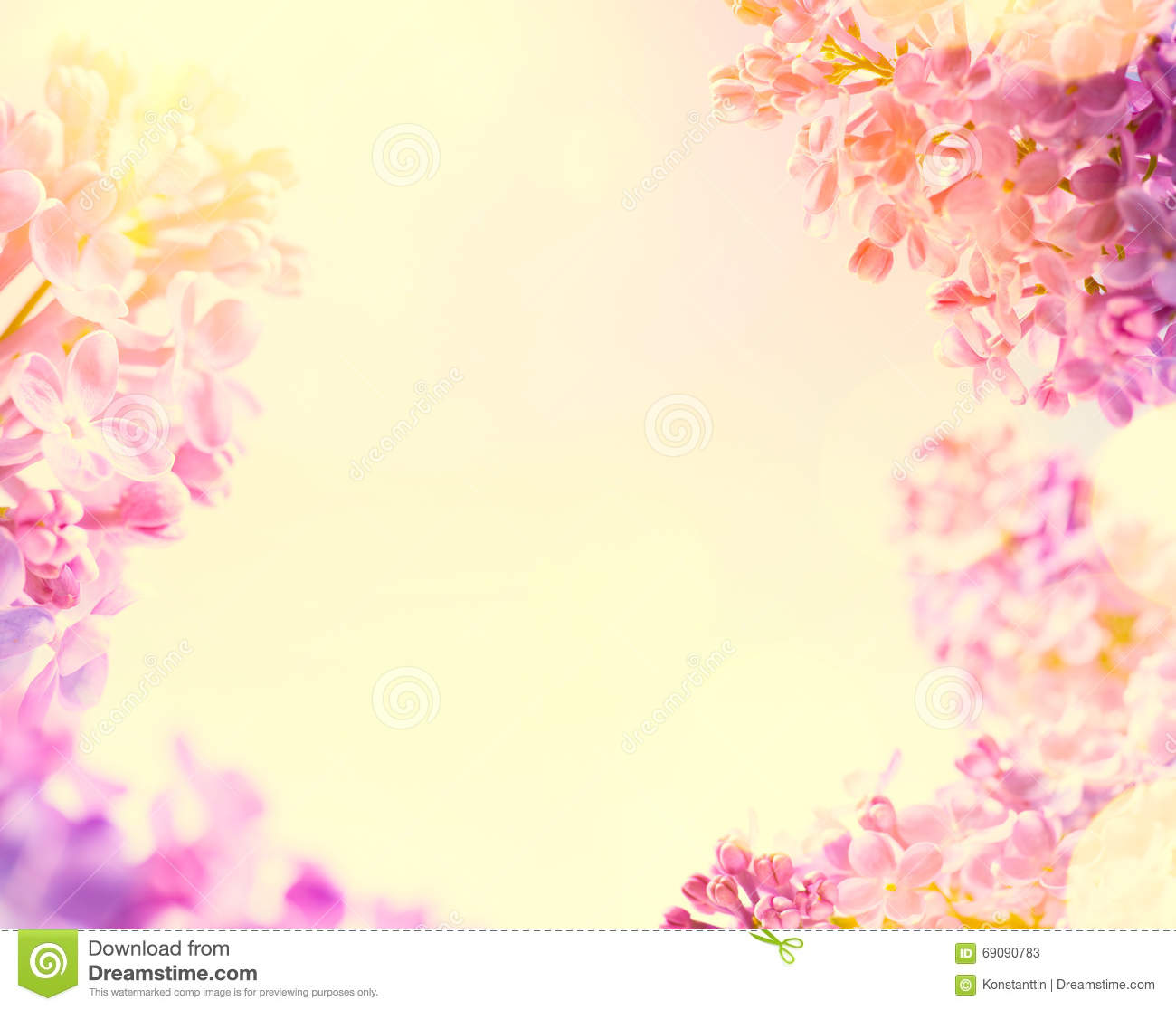Art spring background with fresh spring flowers stock image image royalty free stock photo mightylinksfo