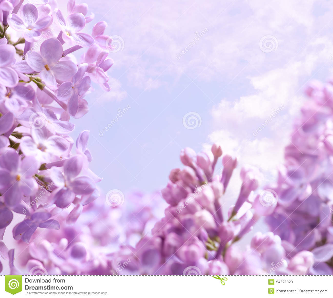 Spring lilac flower background. Spring flowers.