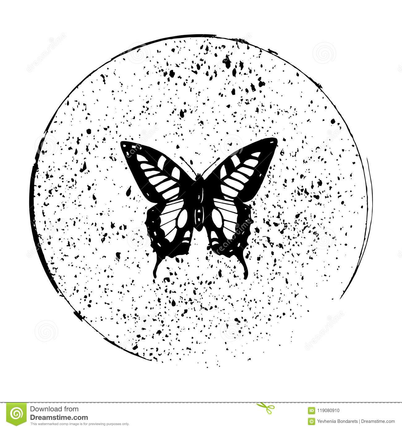 9cde52e9403ba Art,white,vector,animal,beauty,butterfly,circle,collection ,decorative,fly,illustration,monarch,natural,nature,paper,spring,summer,wing
