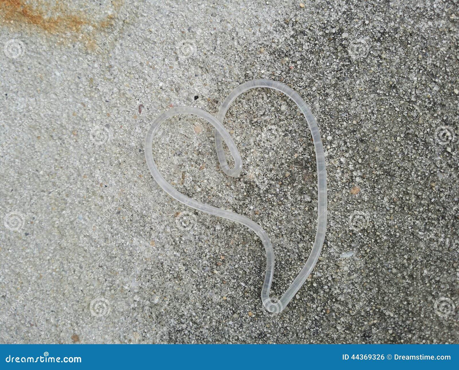 Arte astratta del cuore