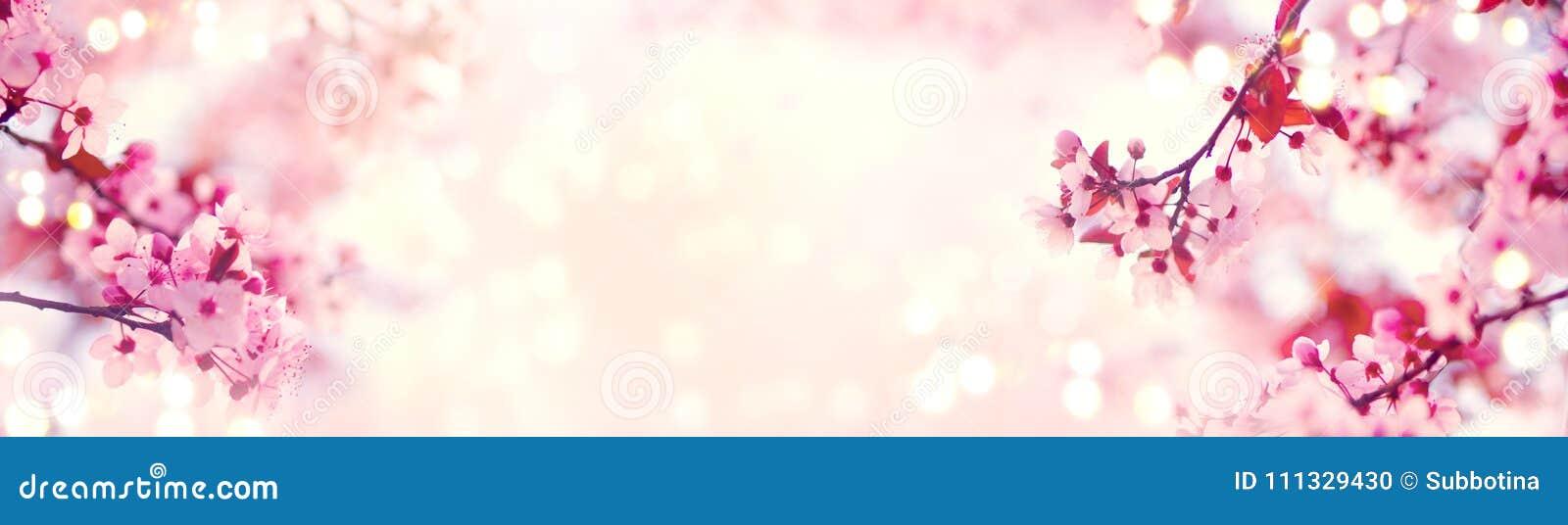 Arte de la frontera o del fondo de la primavera con el flor rosado Escena hermosa de la naturaleza con el árbol floreciente