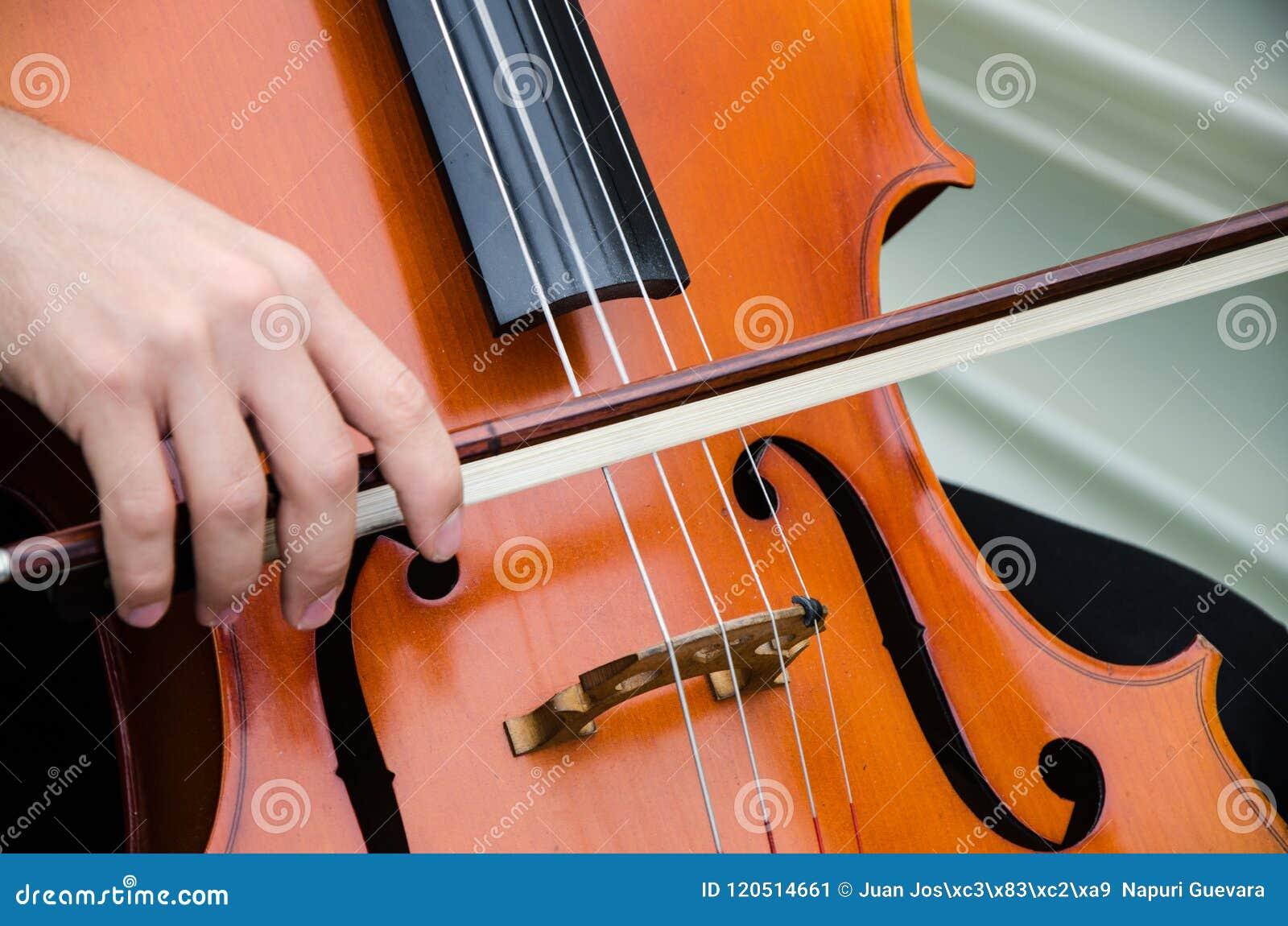 Arte y violinista elegante del hombre de Young del artista que toca el violín en negro Música clásica