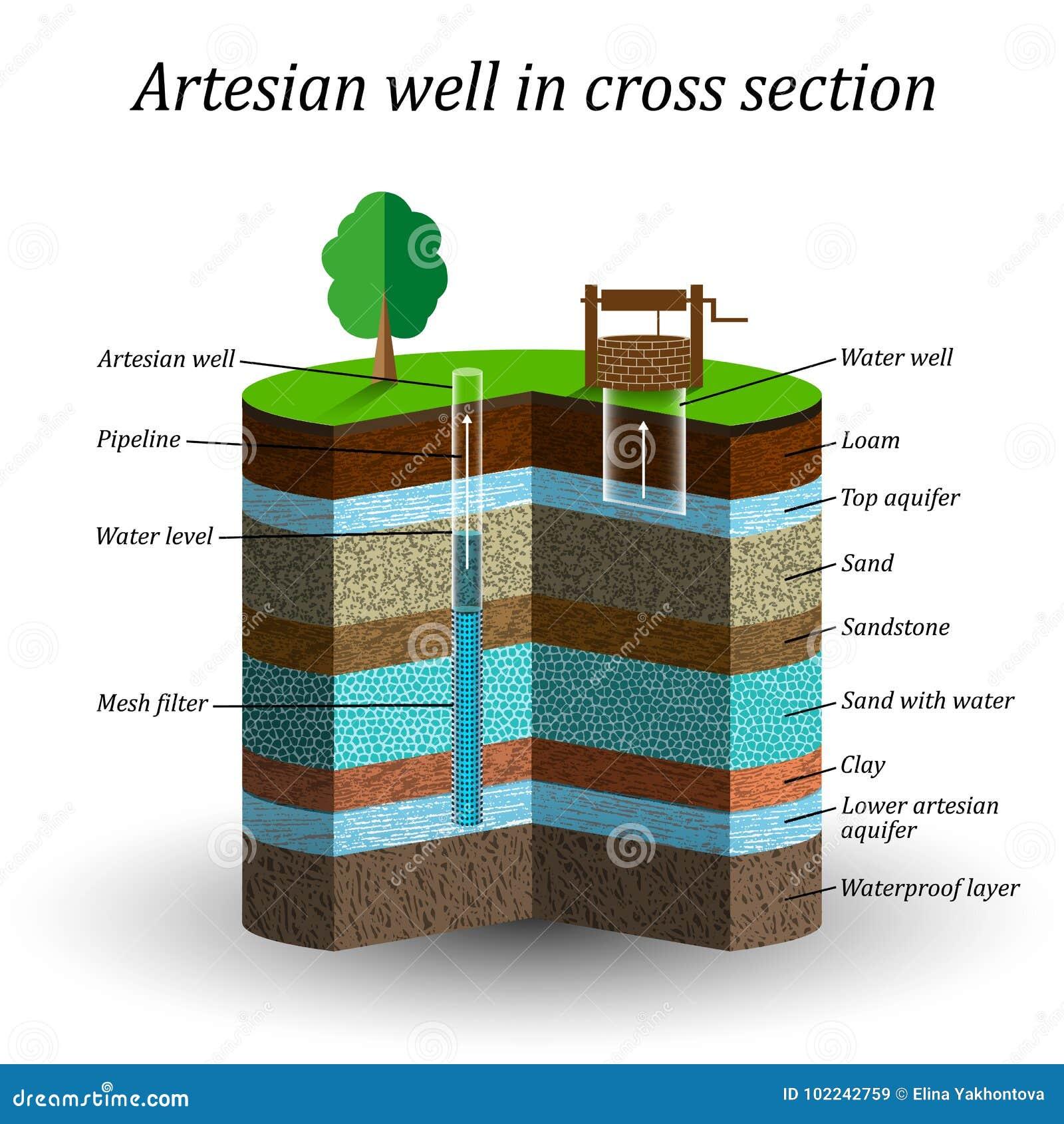Artesische waterput in dwarsdoorsnede, schematische onderwijsaffiche Extractie van vochtigheid van de grond, vectorillustratie