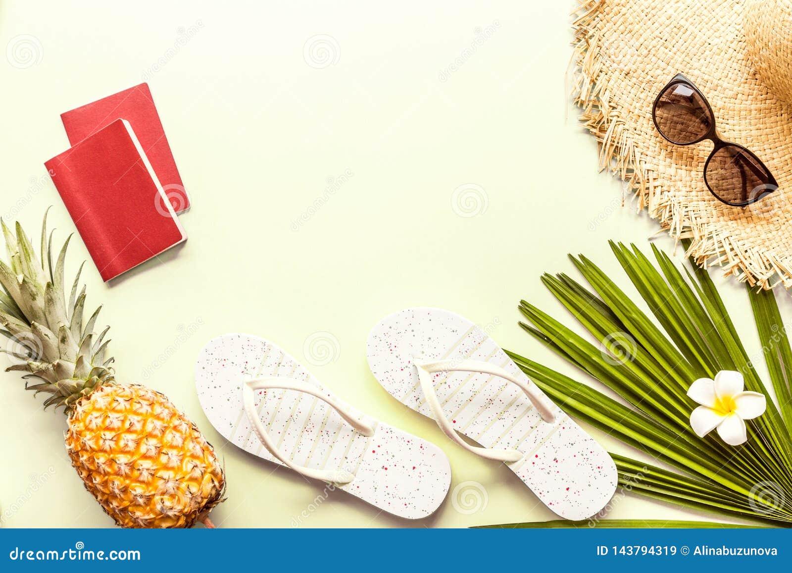 Articles étendus plats de voyage : deux passeports, ananas frais, lunettes de soleil, pantoufles de plage, fleur tropicale et pal