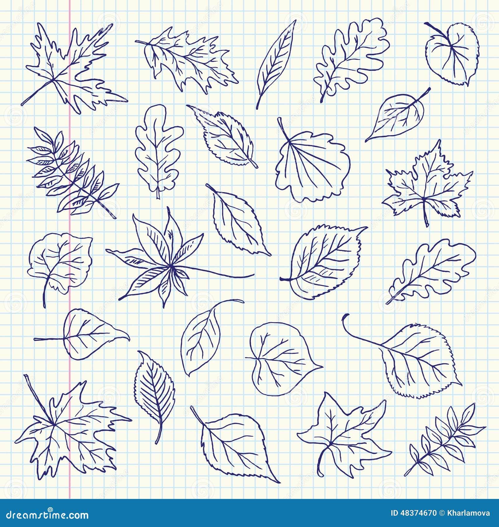 Articles de feuilles d 39 automne de dessin de dessin main lev e sur une feuille de livre d - Feuille automne dessin ...